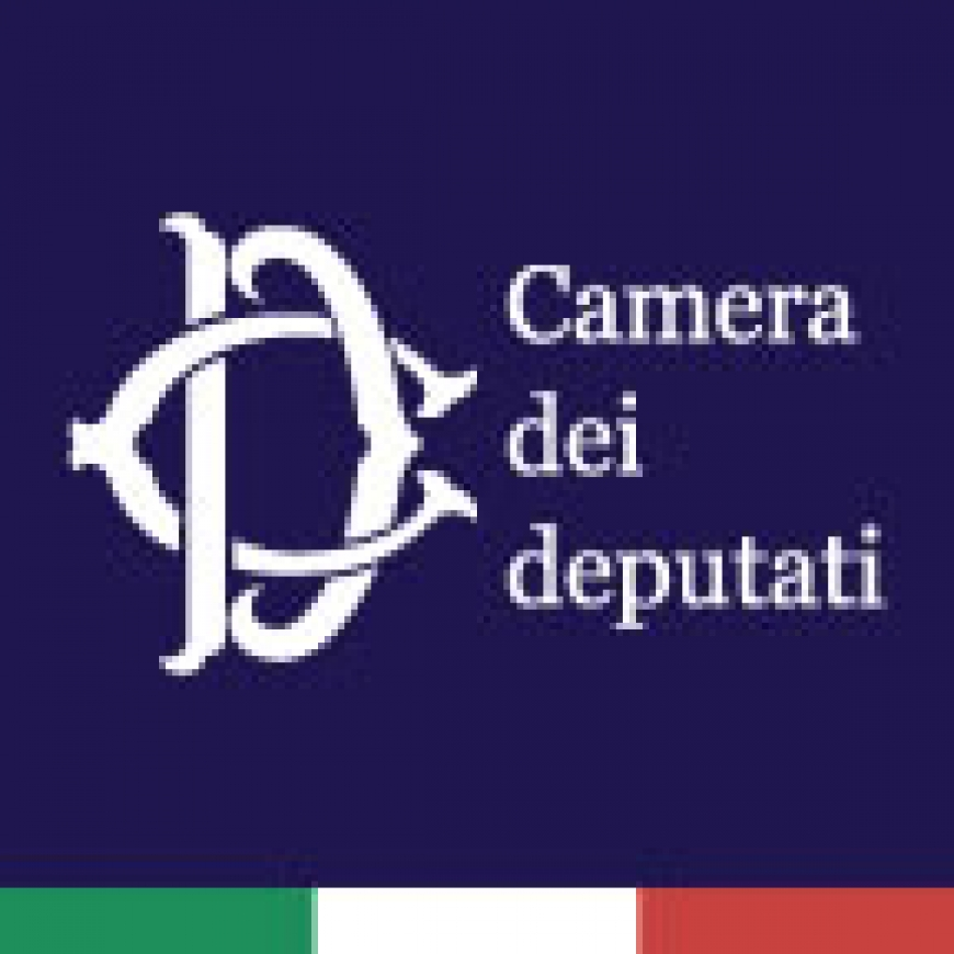 Presentazione interventi trasversali in parlamento e for Rassegna stampa camera deputati